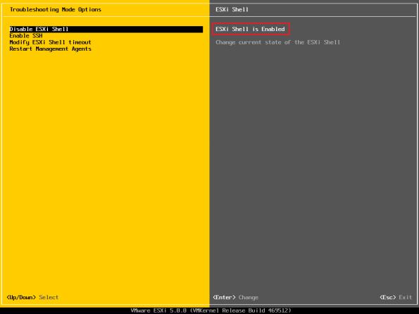 vSphere-5.0-Activate-SSH-and-CLI-005