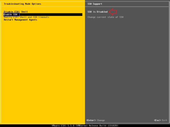 vSphere-5.5-Activate-SSH-and-CLI-006